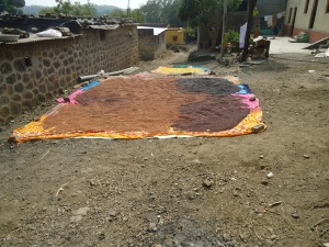 Grain left out to dry in Ralegan Siddhi